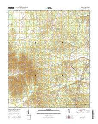 Woodland Mississippi Current topographic map, 1:24000 scale, 7.5 X 7.5 Minute, Year 2015