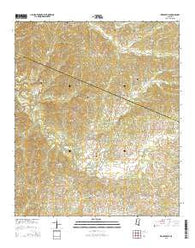 Zeiglerville Mississippi Current topographic map, 1:24000 scale, 7.5 X 7.5 Minute, Year 2015