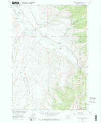 Home Park Ranch Montana Historical topographic map, 1:24000 scale, 7.5 X 7.5 Minute, Year 1963