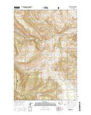 Lingshire Montana Current topographic map, 1:24000 scale, 7.5 X 7.5 Minute, Year 2014 from Montana Maps Store