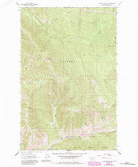 Richards Mountain Montana Historical topographic map, 1:24000 scale, 7.5 X 7.5 Minute, Year 1963