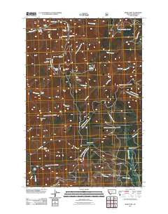 Spink Point Montana Historical topographic map, 1:24000 scale, 7.5 X 7.5 Minute, Year 2011