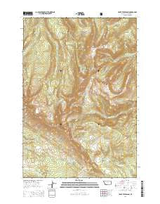 Upper Tepee Basin Montana Current topographic map, 1:24000 scale, 7.5 X 7.5 Minute, Year 2014