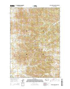 Wolf Mountain Lookout Montana Current topographic map, 1:24000 scale, 7.5 X 7.5 Minute, Year 2014