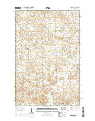 Ziegele Coulee Montana Current topographic map, 1:24000 scale, 7.5 X 7.5 Minute, Year 2014