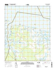 Lowland North Carolina Current topographic map, 1:24000 scale, 7.5 X 7.5 Minute, Year 2016