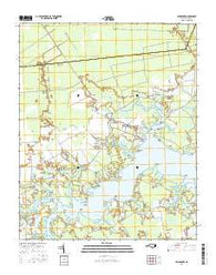 Vandemere North Carolina Current topographic map, 1:24000 scale, 7.5 X 7.5 Minute, Year 2016