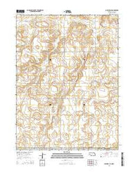 Bushnell SE Nebraska Current topographic map, 1:24000 scale, 7.5 X 7.5 Minute, Year 2014