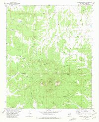 Alegres Mountain New Mexico Historical topographic map, 1:24000 scale, 7.5 X 7.5 Minute, Year 1981