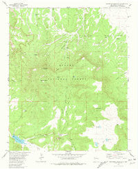 Escondido Mountain New Mexico Historical topographic map, 1:24000 scale, 7.5 X 7.5 Minute, Year 1981
