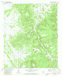 Largo Mesa New Mexico Historical topographic map, 1:24000 scale, 7.5 X 7.5 Minute, Year 1981