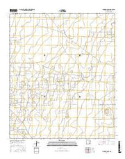 Lovington SW New Mexico Current topographic map, 1:24000 scale, 7.5 X 7.5 Minute, Year 2017 from New Mexico Maps Store