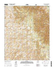 Pajaro Canyon New Mexico Current topographic map, 1:24000 scale, 7.5 X 7.5 Minute, Year 2017 from New Mexico Maps Store