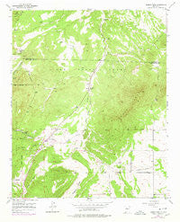Sandia Park New Mexico Historical topographic map, 1:24000 scale, 7.5 X 7.5 Minute, Year 1954