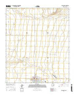 Tatum North New Mexico Current topographic map, 1:24000 scale, 7.5 X 7.5 Minute, Year 2017 from New Mexico Map Store