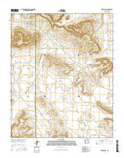 Togeye Lake New Mexico Current topographic map, 1:24000 scale, 7.5 X 7.5 Minute, Year 2017 from New Mexico Maps Store