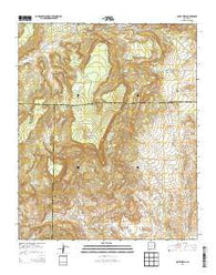 Wiley Mesa New Mexico Historical topographic map, 1:24000 scale, 7.5 X 7.5 Minute, Year 2013