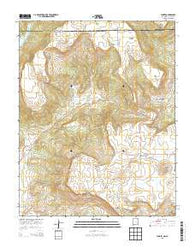 Yankee New Mexico Historical topographic map, 1:24000 scale, 7.5 X 7.5 Minute, Year 2013
