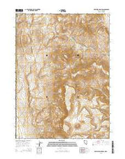 Fortynine Mountain Nevada Current topographic map, 1:24000 scale, 7.5 X 7.5 Minute, Year 2015 from Nevada Maps Store
