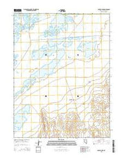 Foxtail Lake Nevada Current topographic map, 1:24000 scale, 7.5 X 7.5 Minute, Year 2015 from Nevada Maps Store