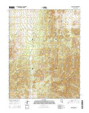 Mount Irish Nevada Current topographic map, 1:24000 scale, 7.5 X 7.5 Minute, Year 2014 from Nevada Maps Store