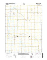 Pidgeon Spring SE Nevada Current topographic map, 1:24000 scale, 7.5 X 7.5 Minute, Year 2015 from Nevada Maps Store