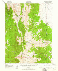 Treasure Hill Nevada Historical topographic map, 1:62500 scale, 15 X 15 Minute, Year 1949