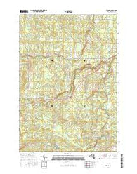 Altona New York Current topographic map, 1:24000 scale, 7.5 X 7.5 Minute, Year 2016