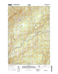 Dannemora New York Current topographic map, 1:24000 scale, 7.5 X 7.5 Minute, Year 2016