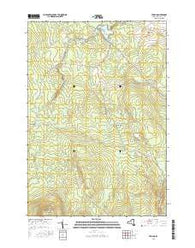 Jericho New York Current topographic map, 1:24000 scale, 7.5 X 7.5 Minute, Year 2016