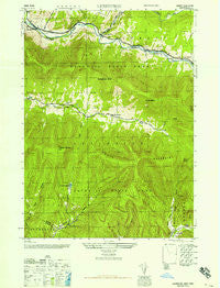 Lexington New York Historical topographic map, 1:24000 scale, 7.5 X 7.5 Minute, Year 1946