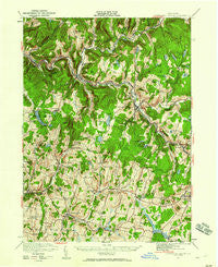 Livingston Manor New York Historical topographic map, 1:62500 scale, 15 X 15 Minute, Year 1921