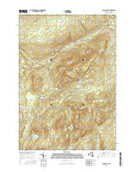 Peasleeville New York Current topographic map, 1:24000 scale, 7.5 X 7.5 Minute, Year 2016