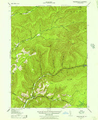 Peekamoose Mountain New York Historical topographic map, 1:24000 scale, 7.5 X 7.5 Minute, Year 1943