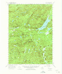 Piseco Lake New York Historical topographic map, 1:62500 scale, 15 X 15 Minute, Year 1954