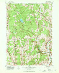 Tyner New York Historical topographic map, 1:24000 scale, 7.5 X 7.5 Minute, Year 1949