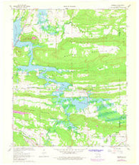 Adamson Oklahoma Historical topographic map, 1:24000 scale, 7.5 X 7.5 Minute, Year 1967