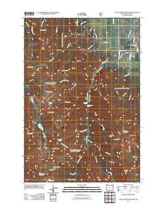 Chief Joseph Mountain Oregon Historical topographic map, 1:24000 scale, 7.5 X 7.5 Minute, Year 2011