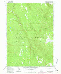 Coffeepot Creek Oregon Historical topographic map, 1:24000 scale, 7.5 X 7.5 Minute, Year 1966