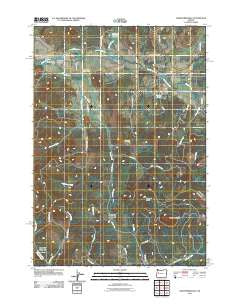 Crawfordsville Oregon Historical topographic map, 1:24000 scale, 7.5 X 7.5 Minute, Year 2011