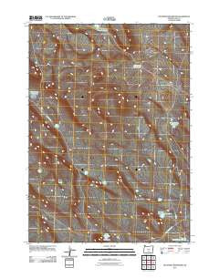 Diatomite Reservoir Oregon Historical topographic map, 1:24000 scale, 7.5 X 7.5 Minute, Year 2011