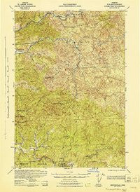 Ginger Peak Oregon Historical topographic map, 1:62500 scale, 15 X 15 Minute, Year 1942