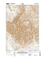 Henry Gulch Oregon Current topographic map, 1:24000 scale, 7.5 X 7.5 Minute, Year 2014
