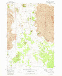 Hogback Butte Oregon Historical topographic map, 1:24000 scale, 7.5 X 7.5 Minute, Year 1981