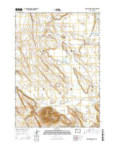 Iron Mountain Flat Oregon Current topographic map, 1:24000 scale, 7.5 X 7.5 Minute, Year 2014