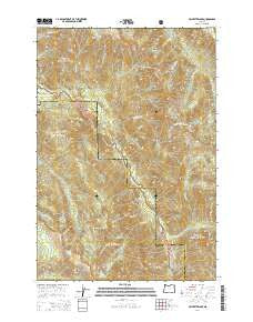 Jim White Ridge Oregon Current topographic map, 1:24000 scale, 7.5 X 7.5 Minute, Year 2014