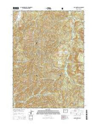 Lane Mountain Oregon Current topographic map, 1:24000 scale, 7.5 X 7.5 Minute, Year 2014
