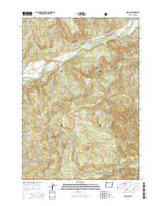 Leaburg Oregon Current topographic map, 1:24000 scale, 7.5 X 7.5 Minute, Year 2014