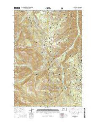 Lick Creek Oregon Current topographic map, 1:24000 scale, 7.5 X 7.5 Minute, Year 2014