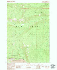 Lionshead Oregon Historical topographic map, 1:24000 scale, 7.5 X 7.5 Minute, Year 1988